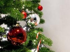Eventi di Natale a Novara Foto